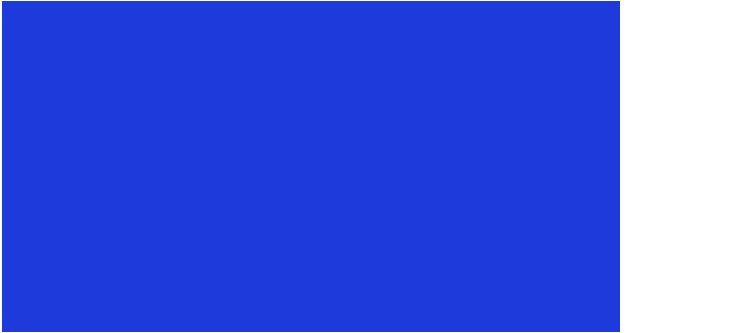 ZenaideFerreira.com